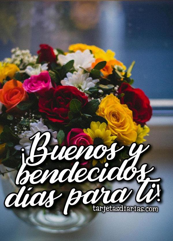 Buenos Y Bendecidos Dias Para Ti Tarjetasdiarias Com Feliz sábado en este bendecido día. buenos y bendecidos dias para ti