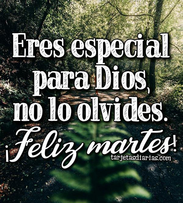 Eres Especial Para Dios No Lo Olvides Feliz Martes